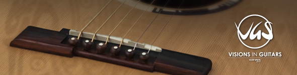 Guitares VGS Acoustique Grand Bayou
