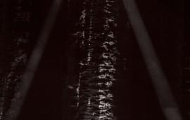 066-DenisBenarrosh-FrancisCabrel2015